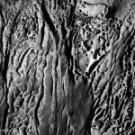 Sandstone Erosion I BW fine art abstract photo