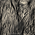 Sandstone Erosion I Toned fine art sepia abstract photograph