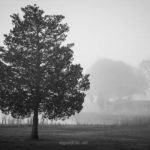 Fine Art black and white landscape photograph by Dave Gordon