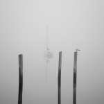 Three Pilings and Sailboat image